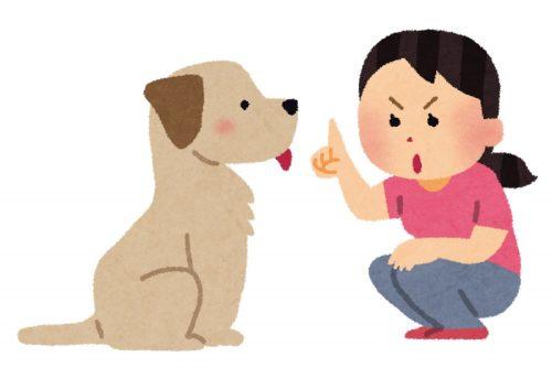 犬のしつけ中イラスト
